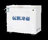 BC-BD-229D-269D冷柜