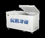 BC-BD569-1159型冰柜