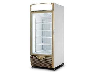 低温冷冻冰淇淋展示柜