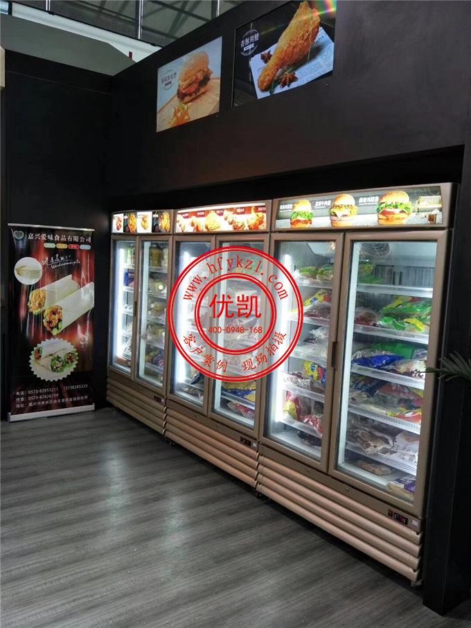 低温冷冻双门冰淇淋展示柜