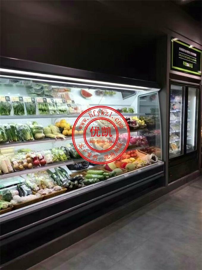 SG-R型水果保鲜柜