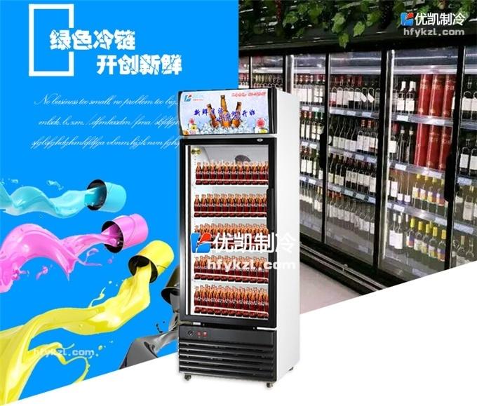 BL-A2单门风冷饮料柜